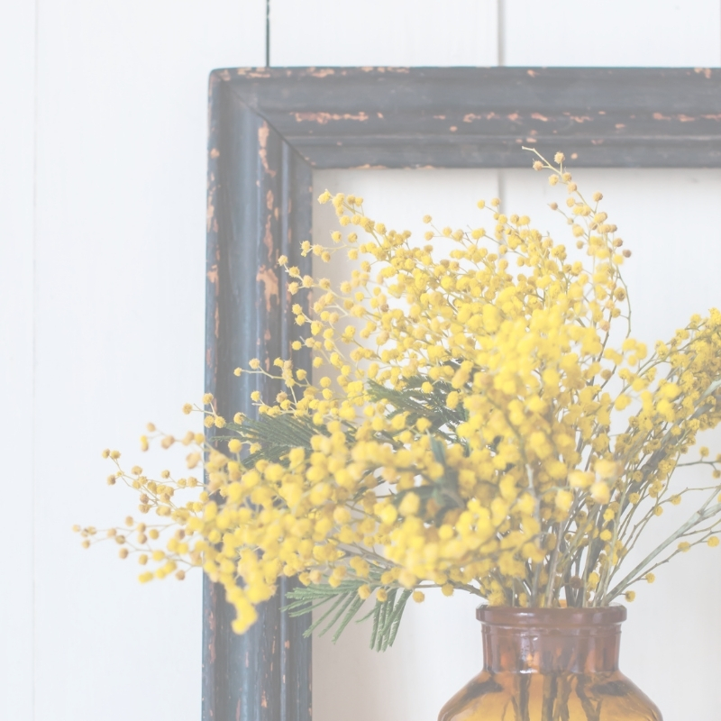 Yellow blossom flowers in amber vase with black frame behind