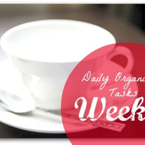 daily organising tasks week 1