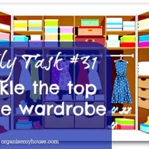 Daily task 31 - tackle the top of the wardrobe