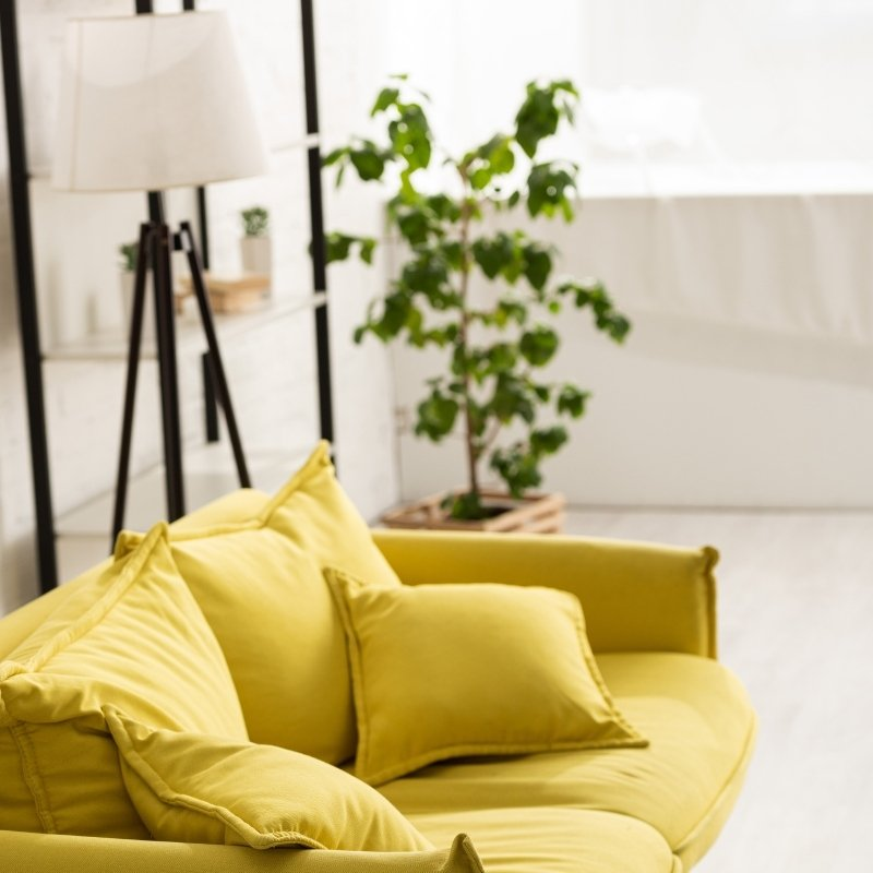 Yellow sofa with plant and lamp behind