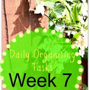 daily organising tasks week 7