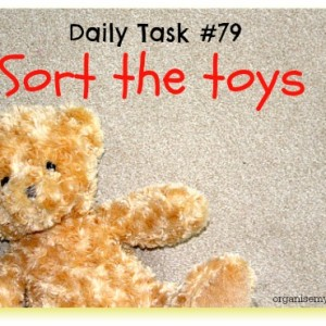 Daily task 79 sort the toys