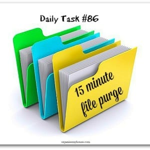 Daily task 15 minute purge from organisemyhouse.com