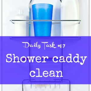 Shower caddy clean - a daily task from organisemyhouse.com