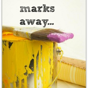 Get rid of paint marks by touching them up - daily task from organisemyhouse.com