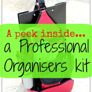 385. a peek inside a professional organisers kit