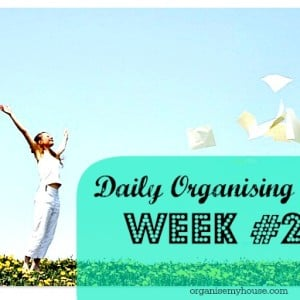 Daily tasks week 20 - a household chore to complete each day