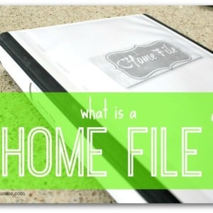 467. what is a home file