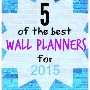 best wall planners 2015