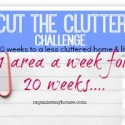 cut the clutter challenge square