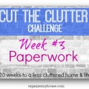cut the clutter challenge - week 3 - paperwork decluttering