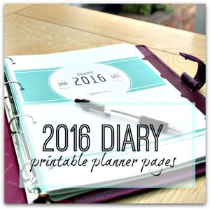 2016 diary planner printable pages eBook