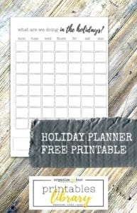 Holiday planner - track what you are doing every day of the holidays - great for kids holidays - summer etc...