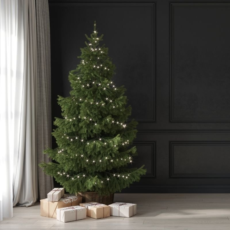 Real Christmas tree with just warm white lights on against black background