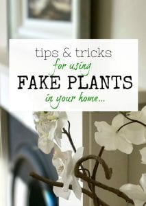 Fake plants - Artificial Plants - Ways to use them around your home - Tips and tricks