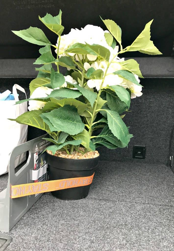 STAYHOLD™ utility strap holding a plant