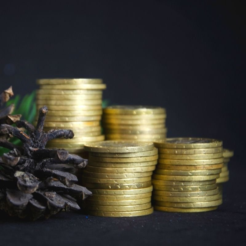 Piles of gold coins with fir cones on a black background