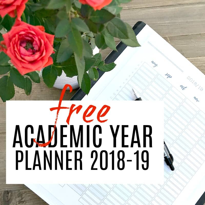 academic year planner in folder with red roses