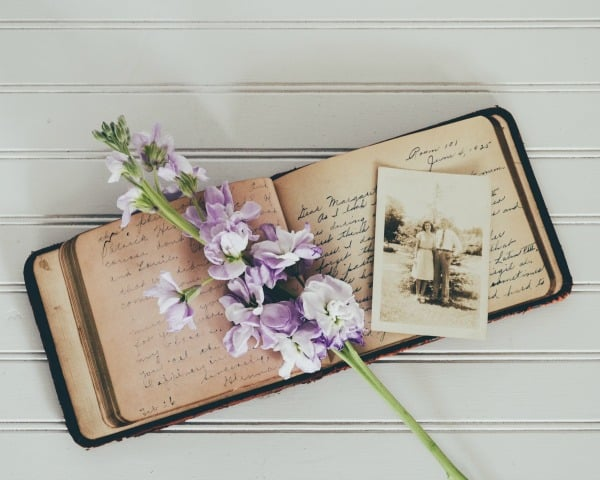 Old book with flowers and photos over the top (sepia)