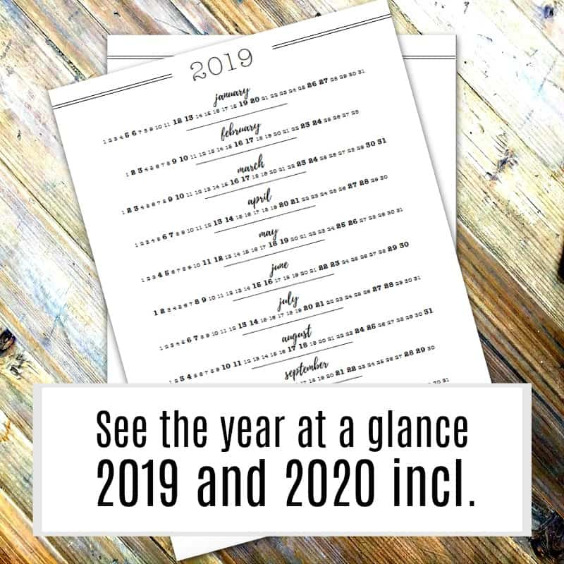 2019 and 2020 Calendar pages