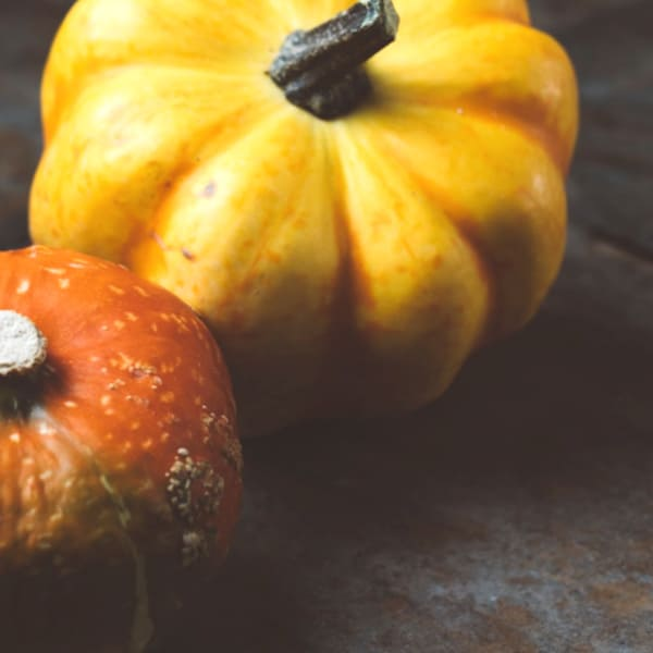 October Pumpkin - Things To Do In October