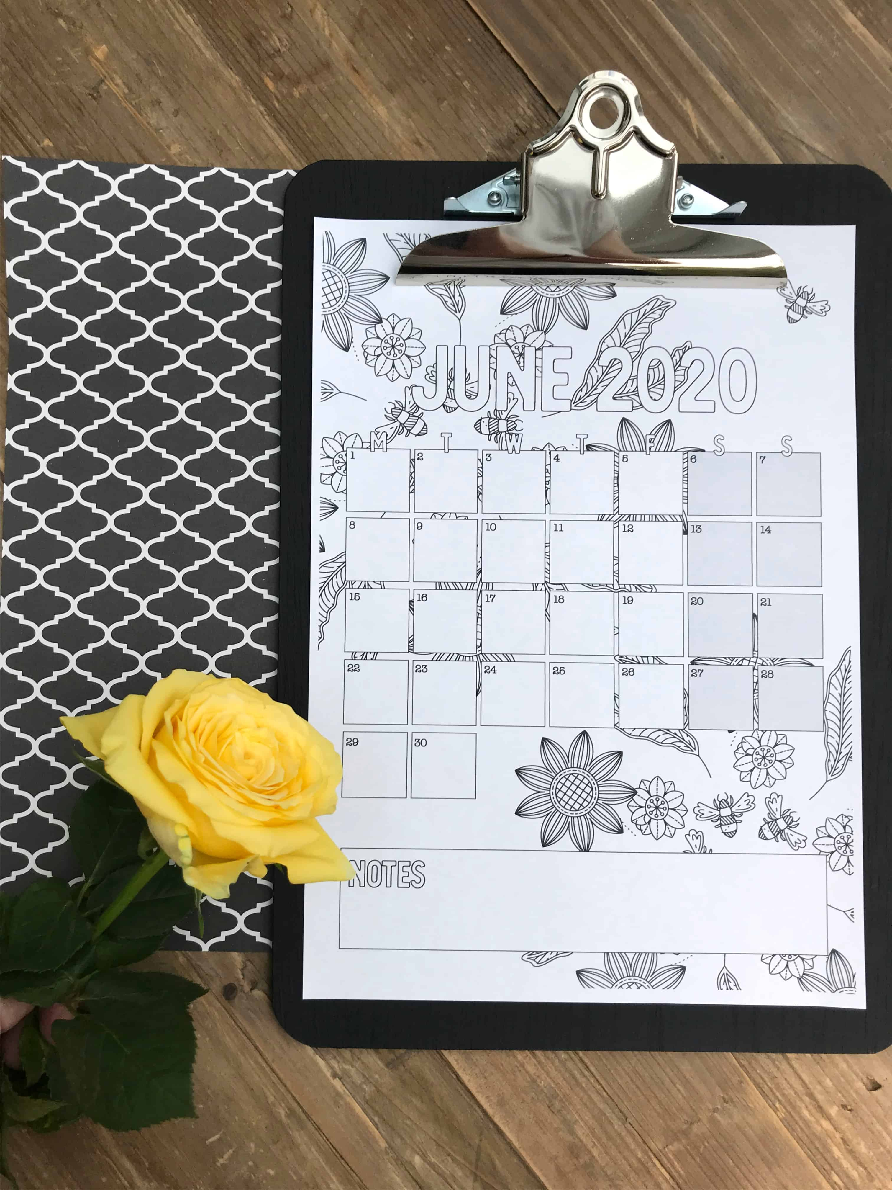 Colouring In Monthly Planner In Situ