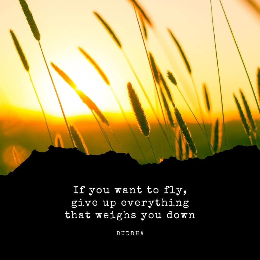 Quote - If you want to fly, give up everything that weighs you down