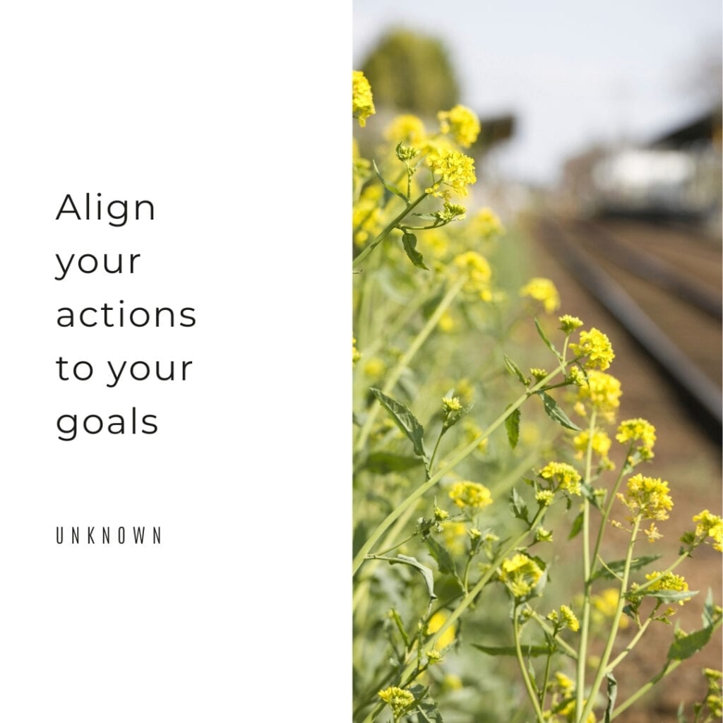 Quote - Align your actions to your goals