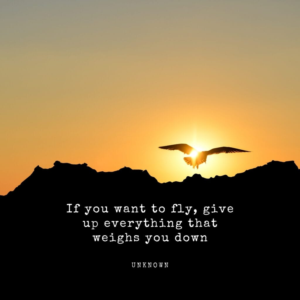 Quote - if you want to fly give up everything that weighs you down
