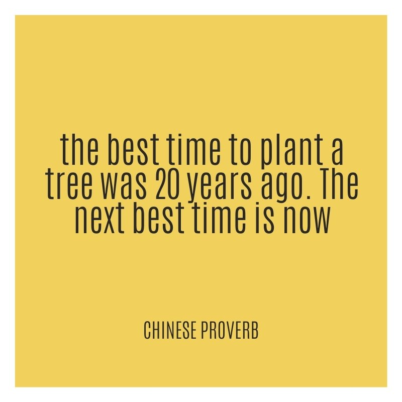 Quote - the best time to plant a tree