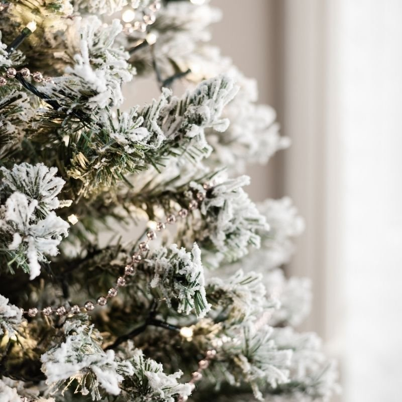 Christmas Tree Decorated for Christmas